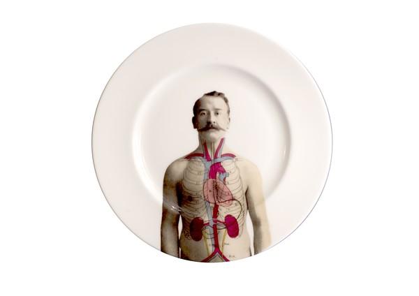 anatomica_plate_10_7